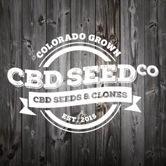 The Hemp Seed Market: Watching Our Sector Grow
