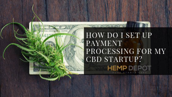 How Do I Set Up Payment Processing for My CBD Startup?