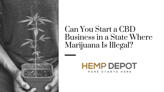 Can You Start a CBD Business in a State Where Marijuana Is Illegal?