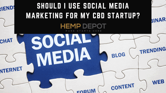 Should I Use Social Media Marketing for My CBD Startup?