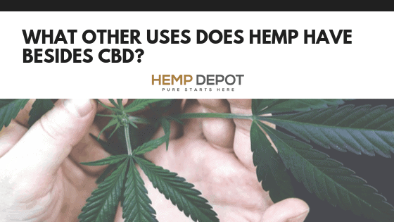 What Other Uses Does Hemp Have Besides CBD?