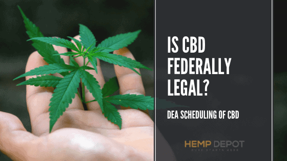 Is CBD Federally Legal? (DEA scheduling)