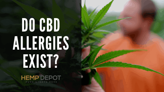 Do CBD Allergies Exist?