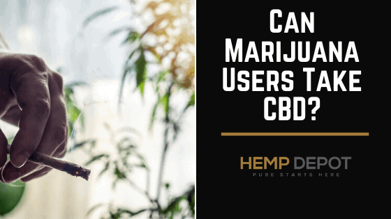 Can Marijuana Users Take CBD?