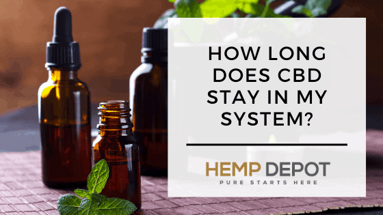 How Long Does CBD Stay in My System?