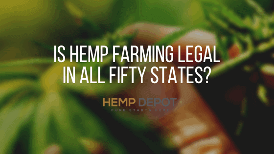 Is Hemp Farming Legal in All Fifty States?