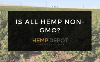Is All Hemp Non-GMO?