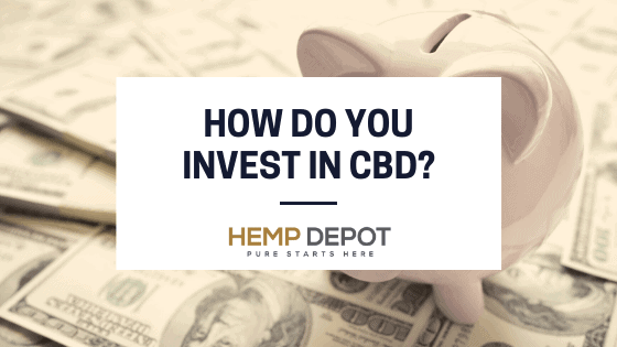 How Do You Invest in CBD?