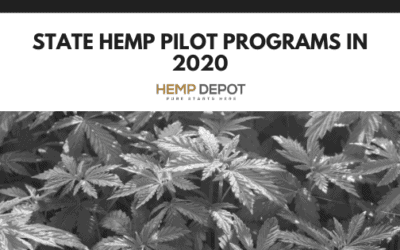 Hemp Pilot Programs in 2020