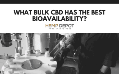 What Bulk CBD Has the Best Bioavailability?
