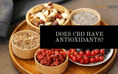 does cbd have antioxidants