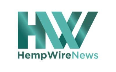 Hemp Depot Slashes Feminized Hemp Seed Prices By 70%