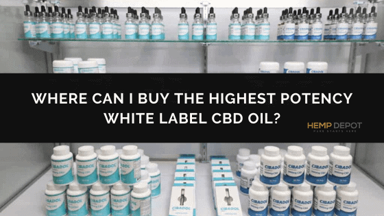 Where Can I Buy the Highest Potency White Label CBD Oil?