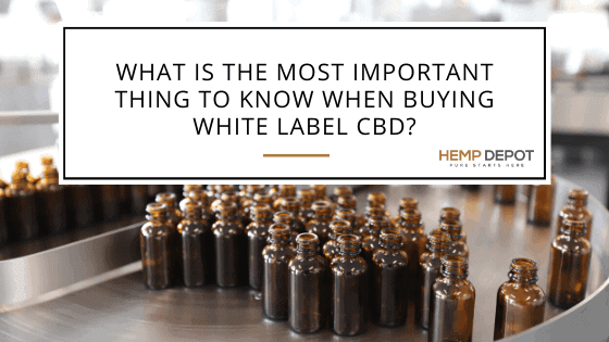 What Is the Most Important Thing to Know When Buying White Label CBD?