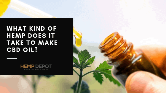 What Kind of Hemp Does It Take to Make CBD Oil?