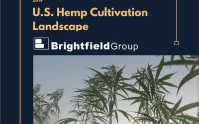 Brightfield Group: US Hemp Cultivation Landscape Analyst Report