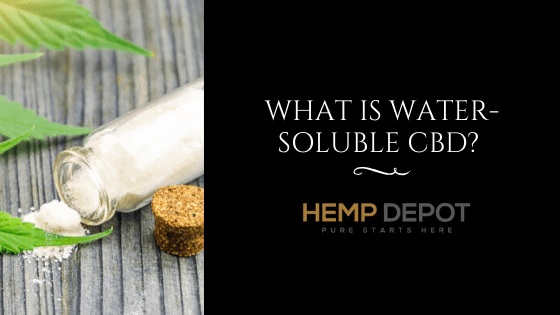 What Is Water-Soluble CBD?