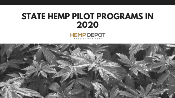 Hemp Pilot Programs in 2020