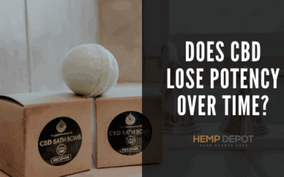 Does CBD Lose Potency Over Time?