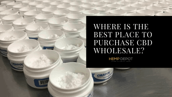 where purchase CBD wholesale