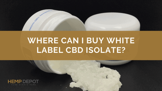Where Can I Buy White Label CBD Isolate?