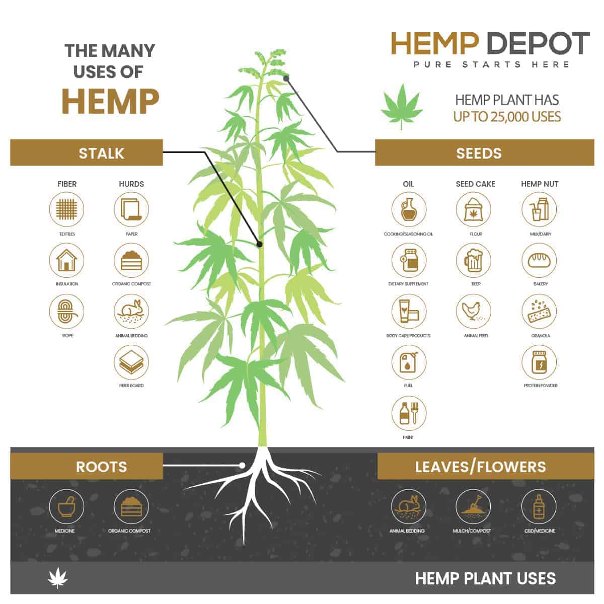 cbd hemp applications